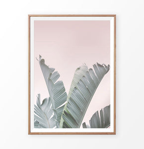 Tropical Plant Leaf Wall Art