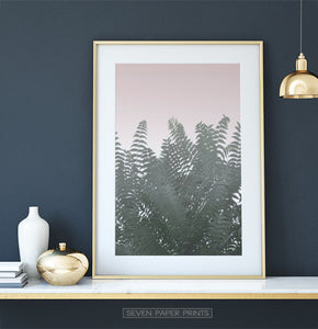 Palm Tree Leaves on Pink for Dark Walls