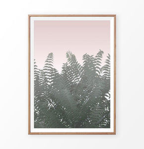 Green tropical plant faded pink photography