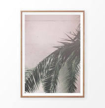 Load image into Gallery viewer, Palm on the pink wall. Retro tropical photograph
