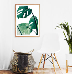 Tropical Monstera Leaf Photo Print