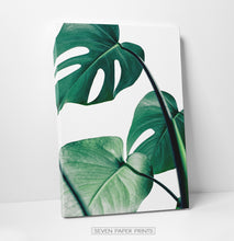 Load image into Gallery viewer, Monstera Leaves. Set of 3 Canvas Prints