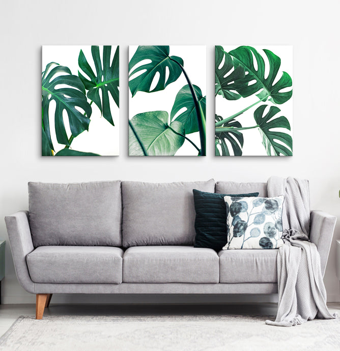 Canvas set of 3 monstera leaves prints for living room