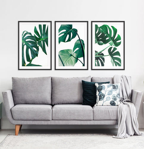 Monstera palm leaves. Tropical gallery wall for living room. Black frames with mat