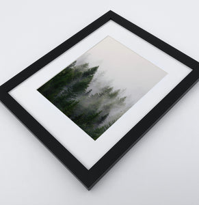 A framed print with a foggy forest