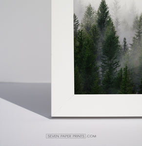 A corner of a white frame