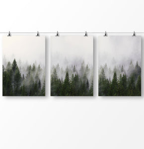 Forest Photography, Misty Forest, Nature Art, Set of 3 Forest Printable, Trees Wall Art, Green Wall Art, Foggy Landscape