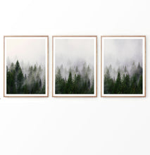 Load image into Gallery viewer, Misty Pines on Foggy Landscape Photography Set of 3 Prints