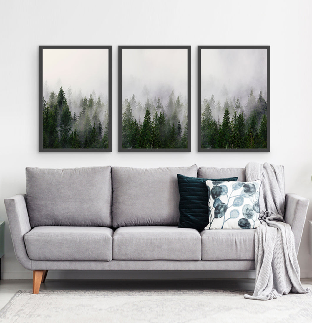 Three framed prints with a foggy forest