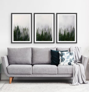 Three framed prints with a foggy forest 3