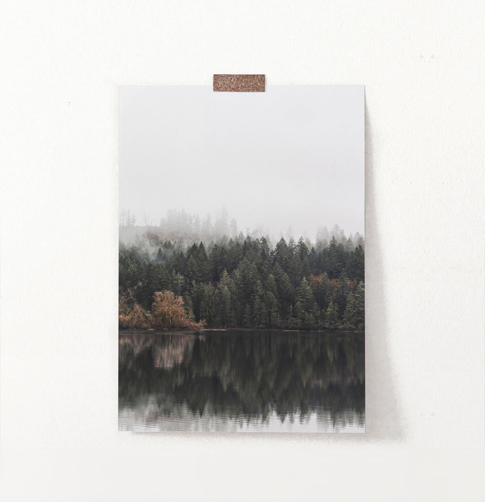 Forest Reflection In The River Photo Wall Art