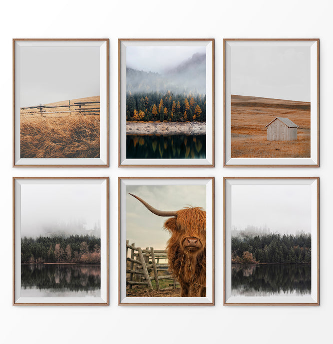 Farmhouse 6 piece wall art. Bull, Forest, Cabin, Field
