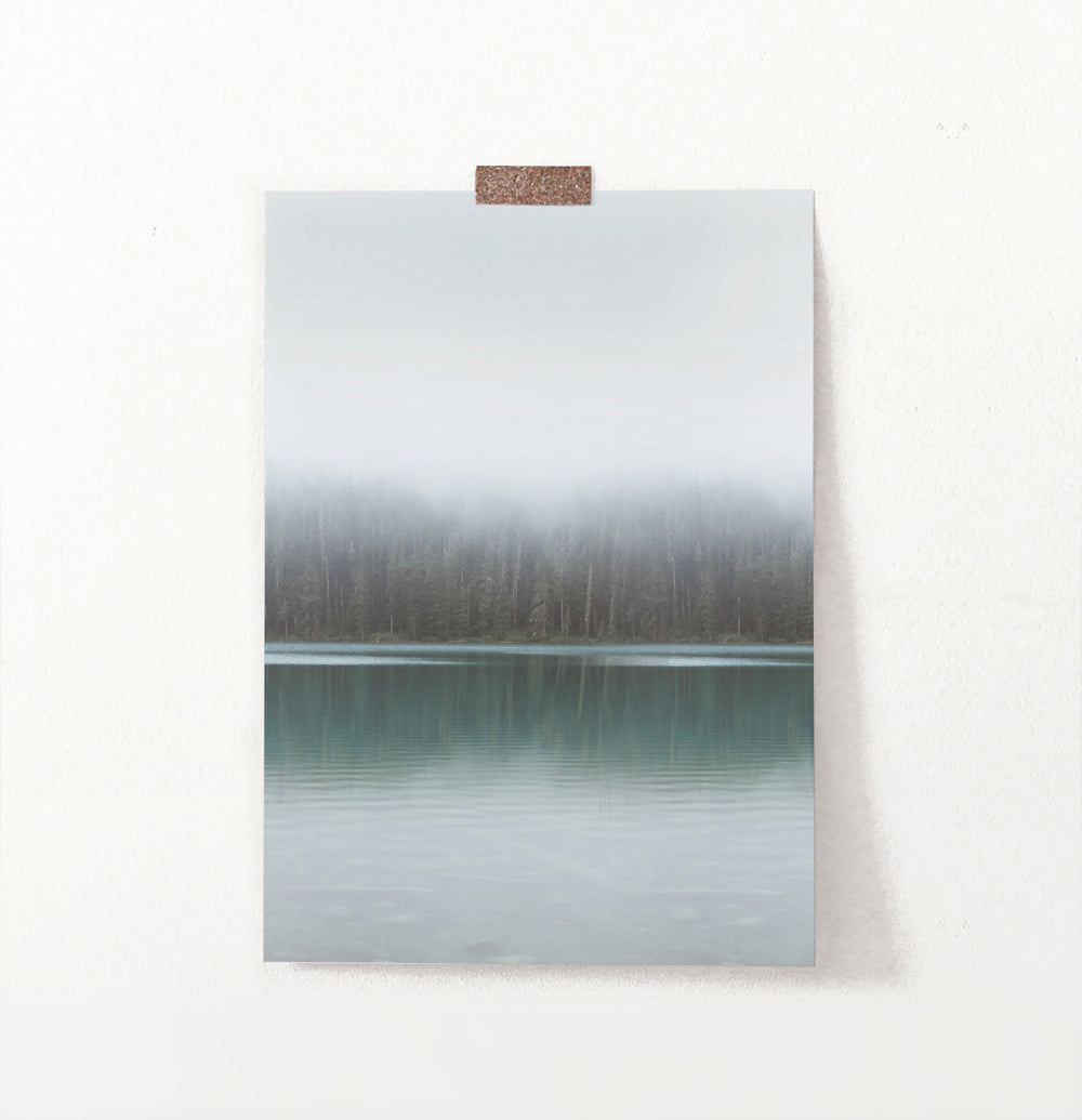 Foggy Green Forest Calm Morning Lake Poster Natural Colors