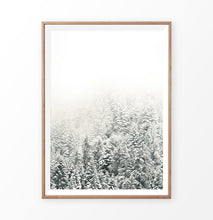 Load image into Gallery viewer, Snowy Branches Spruce Forest Photo Wall Art