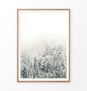 Snowy Branches Spruce Forest Photo Wall Art