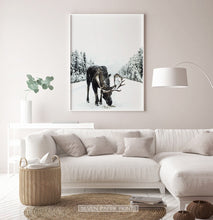 Load image into Gallery viewer, White-framed Moose On a Snowy Country Road Photo Wall Decor