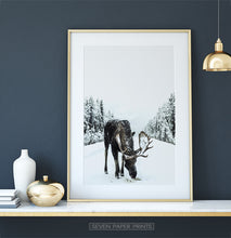 Load image into Gallery viewer, Gold-framed Moose On a Snowy Country Road Photo Wall Decor