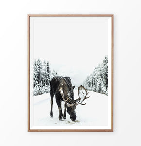 Wood-framed Moose On a Snowy Country Road Photo Wall Decor