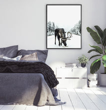 Load image into Gallery viewer, Black-framed Moose On a Snowy Country Road Photo Wall Decor