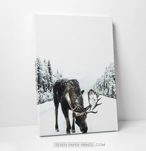 Moose winter and winter nature set of 3 canvases #161