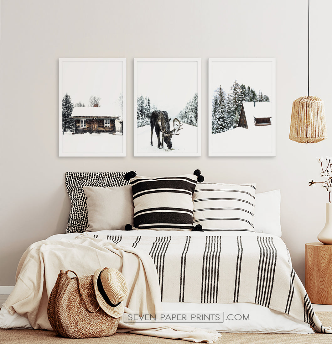 Three photo prints with winter landscapes posters1