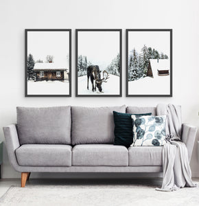 Three photo prints with winter landscapes 3