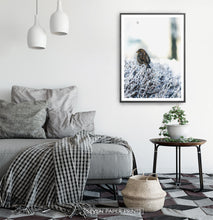 Load image into Gallery viewer, Black-framed Sparrow On Snow-Covered Branches Photo Wall Art