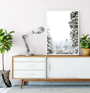 White-framed Covered In Snow Forest Clearing Wall Art