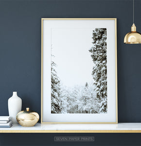 Gold-framed Covered In Snow Forest Clearing Wall Art
