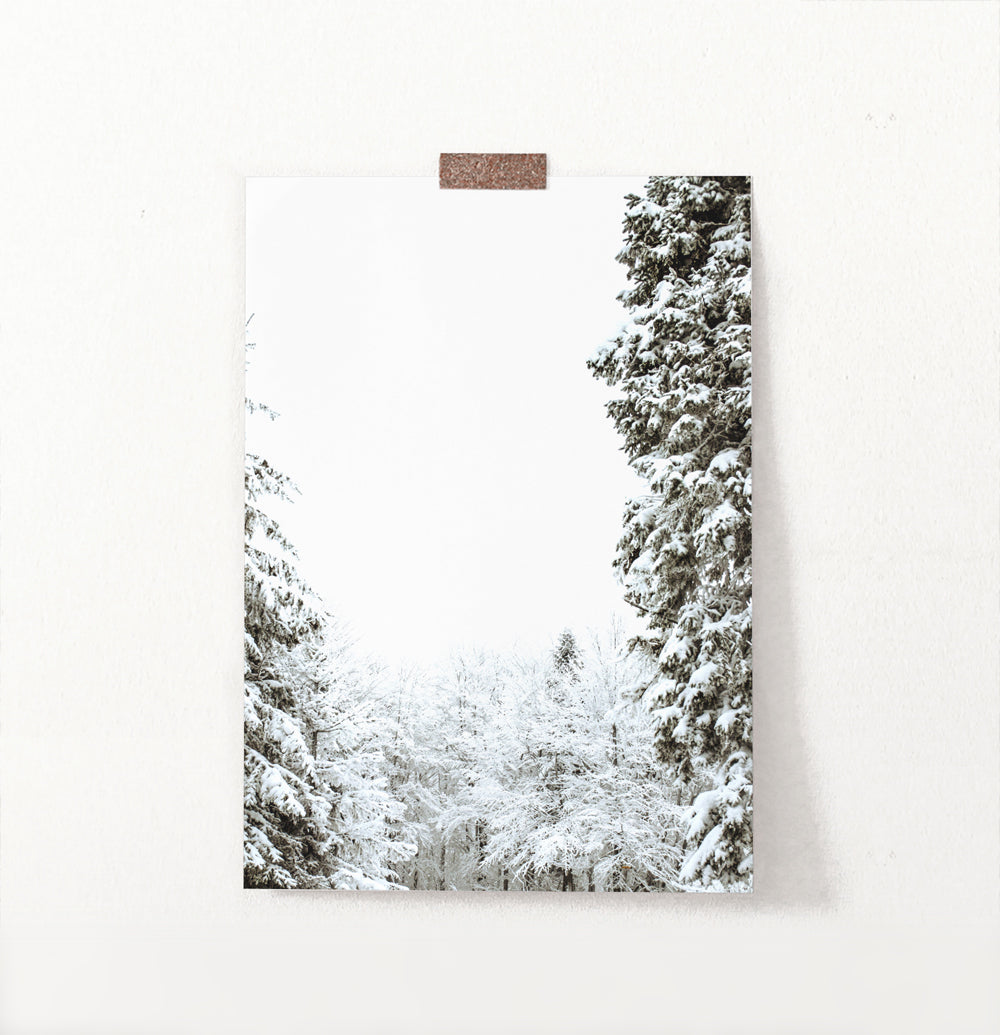 Covered In Snow Forest Clearing Wall Art