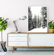 Load image into Gallery viewer, White-framed Wood With Showy Spruces Photo Print