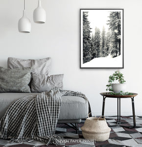 Black-framed Wood With Showy Spruces Photo Print
