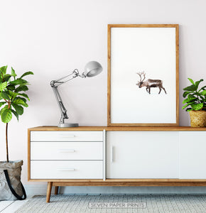 Wooden-framed Deer Walking Through White Nowhere Photo Print