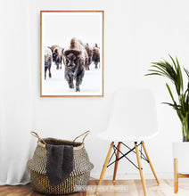 Load image into Gallery viewer, Wooden-framed European Bison Herd Running In Snow Poster