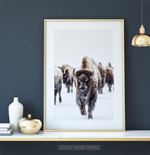 Load image into Gallery viewer, Golden-framed European Bison Herd Running In Snow Poster