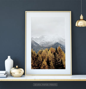 Gold Spruce Forest On Foggy Mountains Background Poster