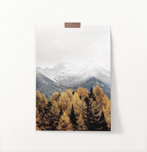 Yellow&Brown Spruce Forest On Foggy Mountains Background Poster