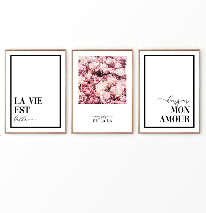 Bonjour Floral Set of 3 Prints in French Style