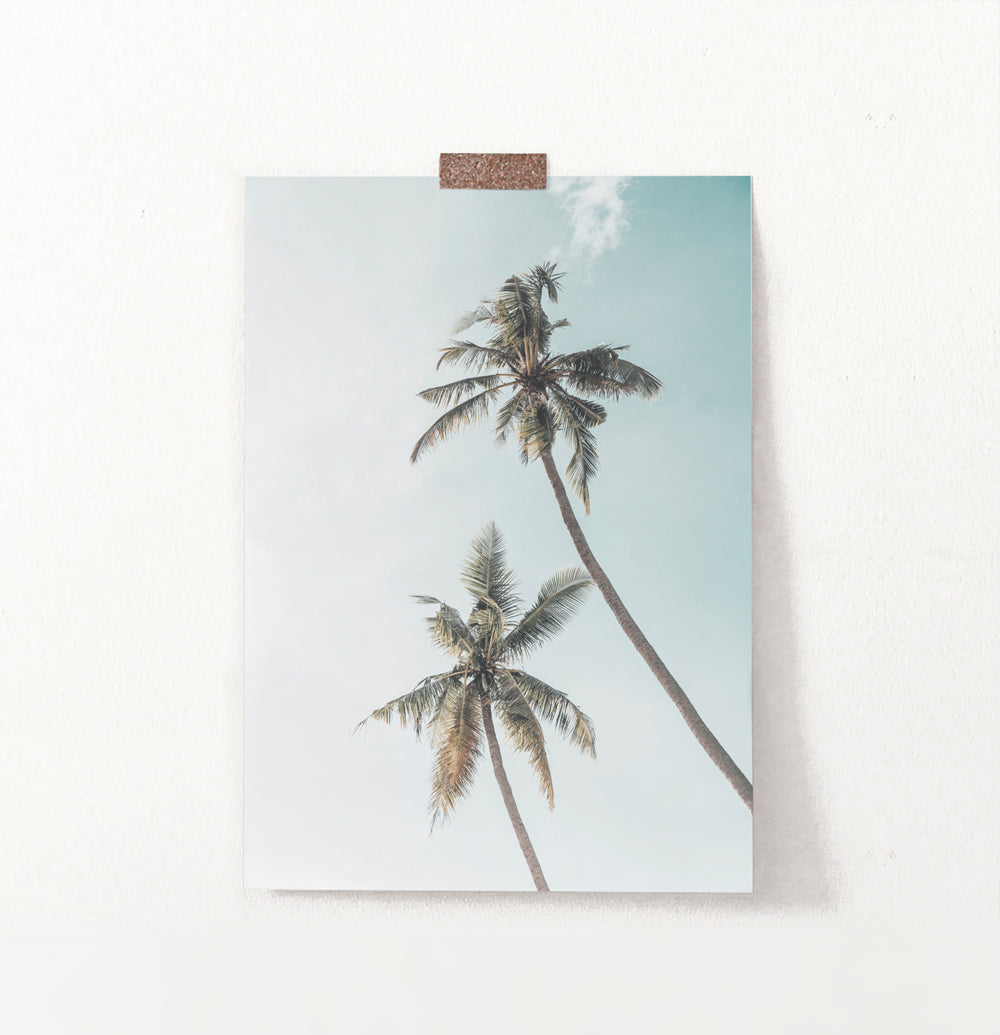 Coastal Palm Trees Summer Beach Wall Art