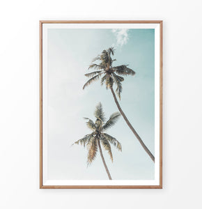 California Palms Tropical Wall Art Print