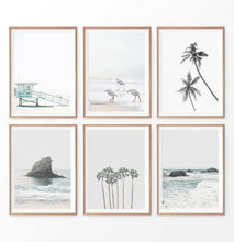 Load image into Gallery viewer, Gray Coastal Print Set. Beach, Palms, Ocean Rock, Waves, Birds