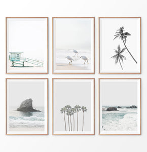 Gray Coastal Print Set. Beach, Palms, Ocean Rock, Waves, Birds