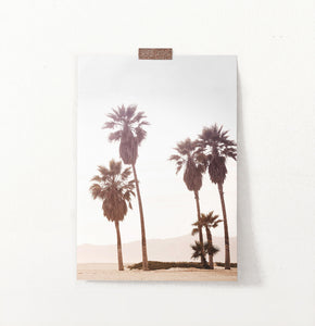 California Palm Trees on Seaside Wall Art