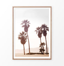 Load image into Gallery viewer, Palm Trees, sun, sand, beach, coastal
