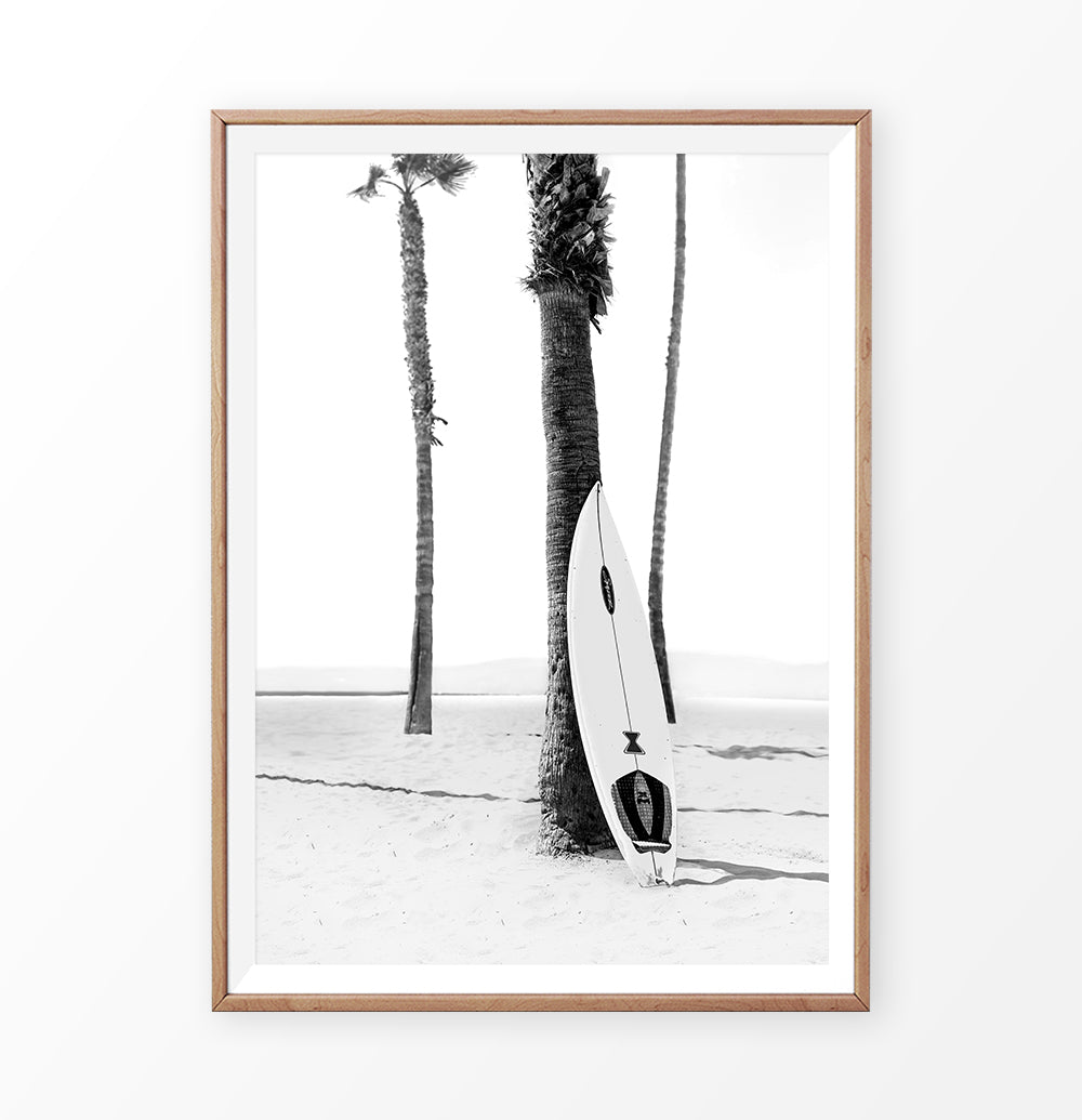 Surfboard on Beach Palm Tree