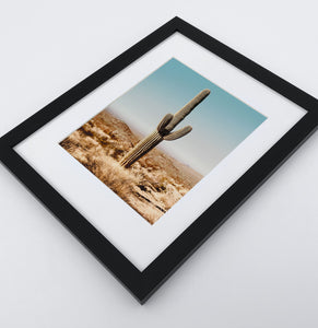 A framed photo print of a Great Canyon cactus