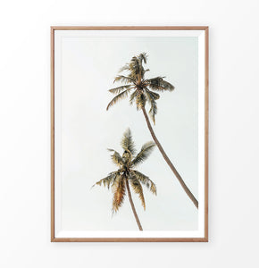 Warm color palm tree print