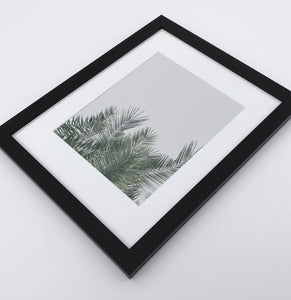 A framed photo print with palm leaves