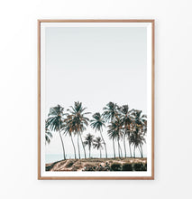 Load image into Gallery viewer, Palm Trees On the Rocky Ocean Beach