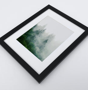 Misty Green Forest Landscape Set of 3 Framed Posters